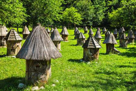 Apiary with unusual hives in the mountains of Abkhazia in the Caucasus Stock Photo