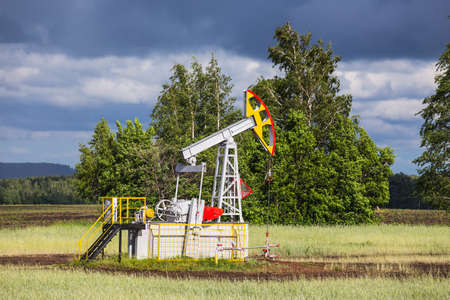 oilwell: Oil Pump on a background of forest in Russia