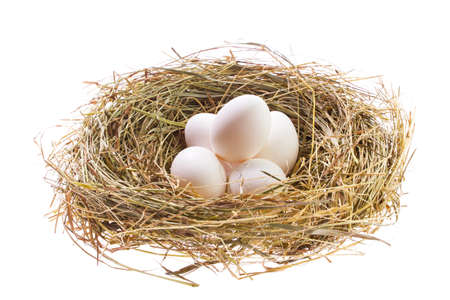 Nest with Easter eggs isolated on white background