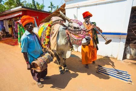 India, Goa, 15 March 2017. Musicians with a trained bull on the market Editorial