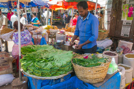 India, Goa. March 10, 2017. Leaves of betel (pan masala) on the market in Goa