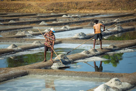 India, Goa, March 14 2017. Production of salt on a farm in India