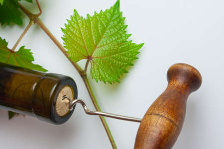bottle of wine from the vine Stock Photo