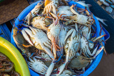 Sale of crabs in the markets of different cities of Goa and other states of India Editorial