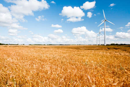 wind turbines in rural area on a field in front of a beautiful sky photo