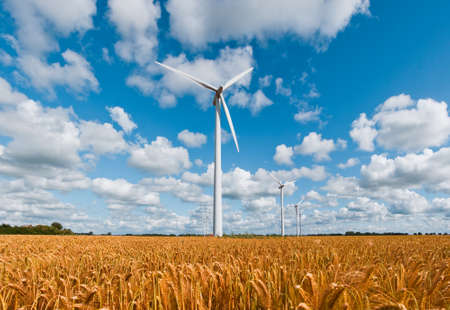 wind turbines in rural area on a wheat field in front of a beautiful sky photo