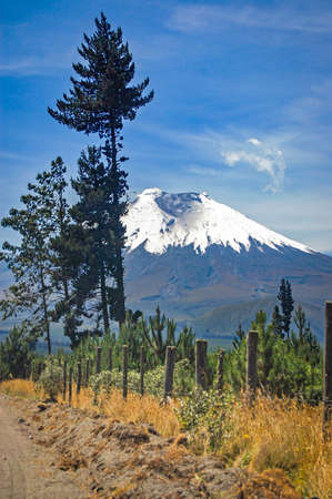 View of the Cotopaxi volcano from the Cotopaxi National Park, on a sunny morning. Ecuador