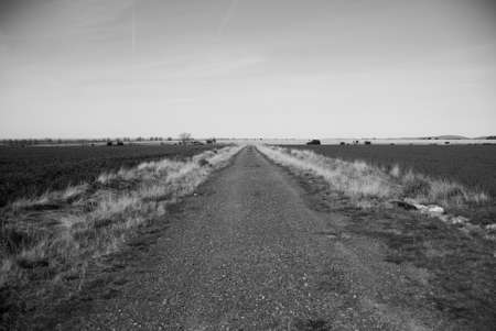 wśród: Wiejskiej drodze wśród pól