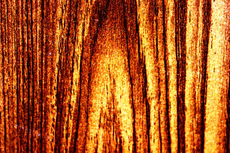 Brown Wood Background photo