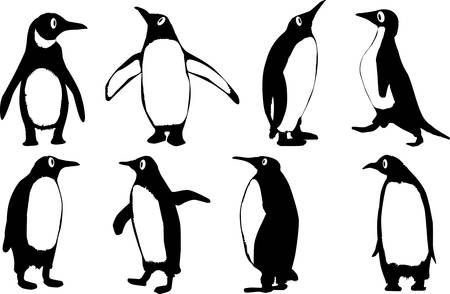 Cartoon Penguins Vector