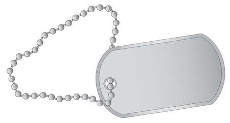 usaf: A military style dog tags with chain  Illustration