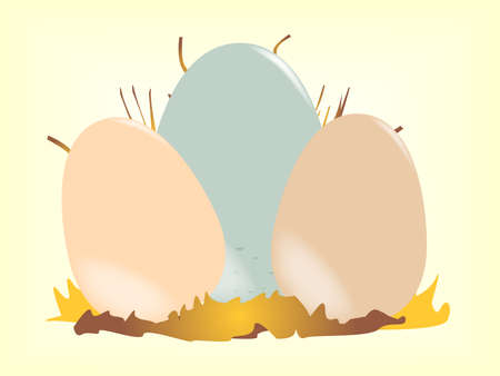 odd one out: Cuckoo Egg Illustration