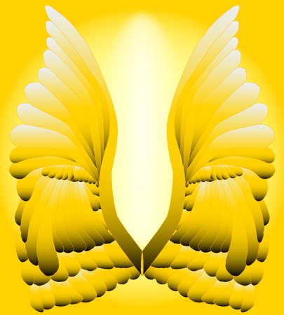 A large pair of golden angelic wings   Vector