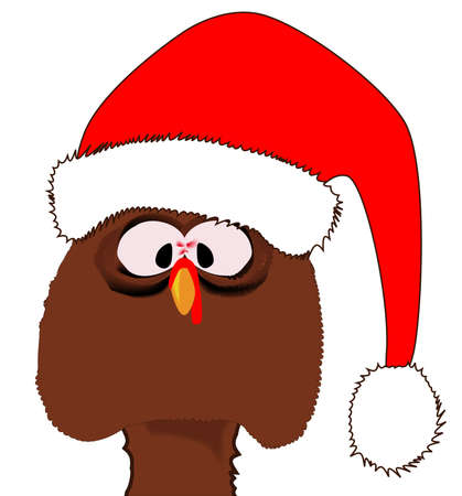 A traditional Christmas Turkey complete with a Father Christmas hat  Vector