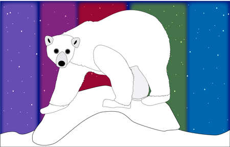 A polar bear standing on an ice flow with the polar lights background Stock Vector - 24427981