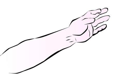 Sketch of a human arm based on sketch by Leonardo Da Vinci Vektorové ilustrace