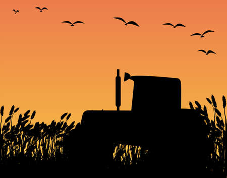 A tractor in silhouette standing in a field of crops  Stock Vector - 26530064