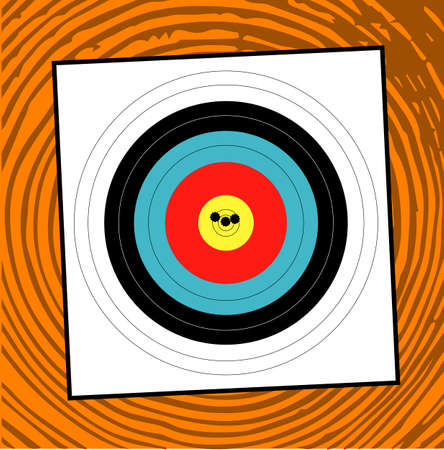grouping: A target with a grouping of bullet holes close to the bulls eye