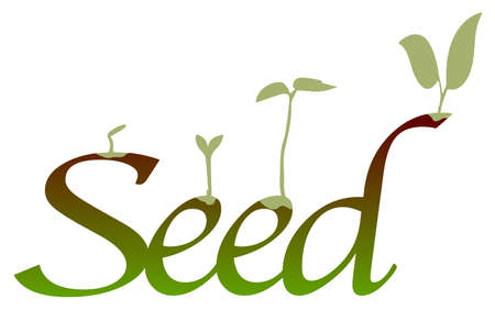 Germinating seeds over text all isolated on a white background Illustration