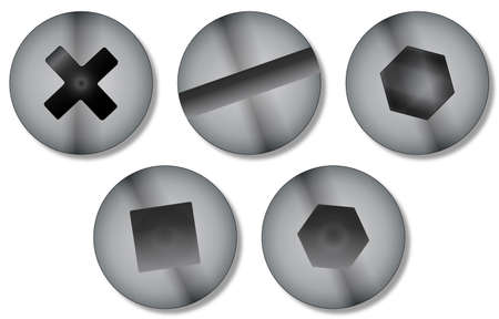 A collection of five regularly used screw heads over a white background