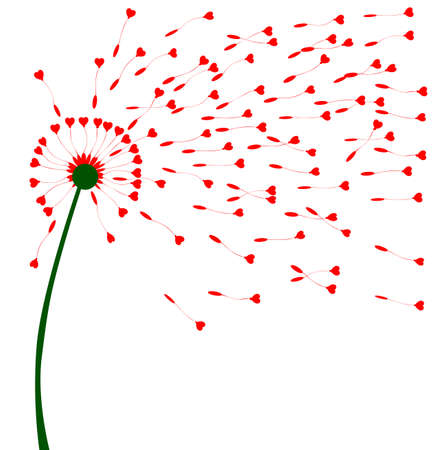 blowing dandelion: A dandelion with seeds of hearts blowing in the wind