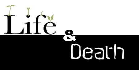 life after death: The words life and death with germinating seeds Illustration
