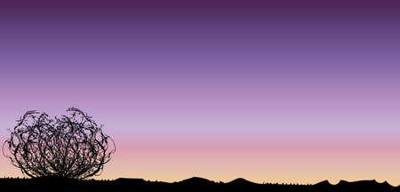 A Texan desert sunset scene with tumbleweed Illustration