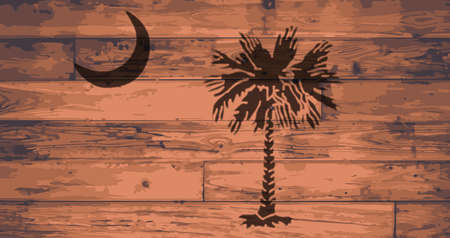 plank: South Carolina State Flag branded onto wooden planks Illustration