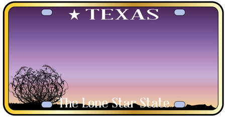 license plate: Texas state license plate with sky and desert background