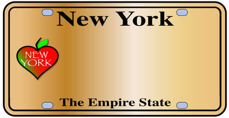 empire state: New York License Plate with motto over a white background Illustration