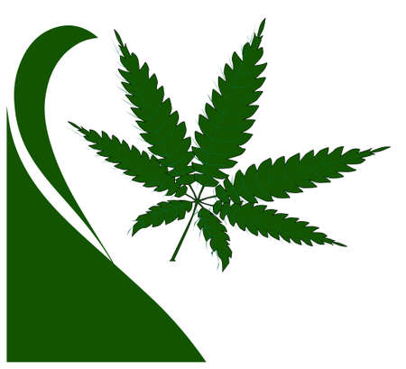 A hemp leaf over white with curl motif Illustration