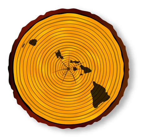 Map of Hawaii on a timber end section over a white background Illustration