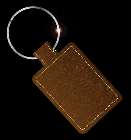 key fob: A brown leather key fob and ring