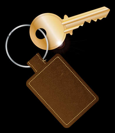 latch: A brown leather key fob and ring with a brass latch key
