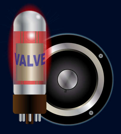 guitar amplifier: A hot guitar amplifier valve and speaker cone