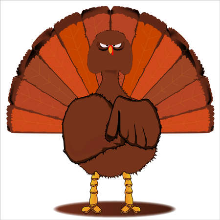 stern: A stern look from a traditional Christmas or Thanksgiving Turkey over a white background Illustration