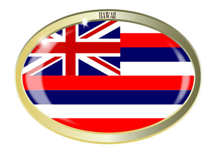 hawaii flag: Oval metal button with the Hawaii flag isolated on a white background
