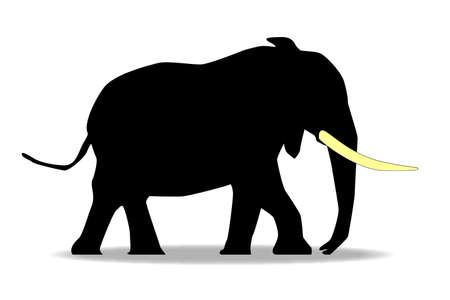 Silhouette di un elefante Africal con zanna di colore giallo su uno sfondo bianco