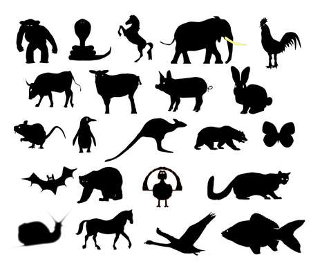 animal silhouettes: A collection of animal silhouettes over a white background