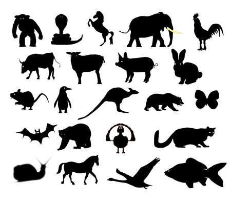 Een collectie van dierlijke silhouetten op een witte achtergrond