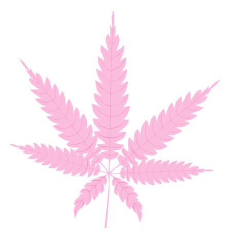 A cannabis leaf in pink isolated over a white background. Illustration