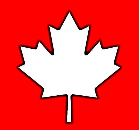 canadian maple leaf: The Canadian maple leaf flag design over a red background Illustration