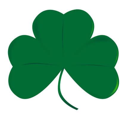 eire: A very lucky green Irish shamrock over white