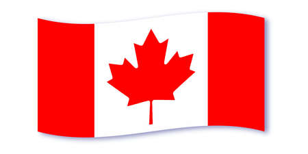 canadian flag: The canadian flag waving over a white background