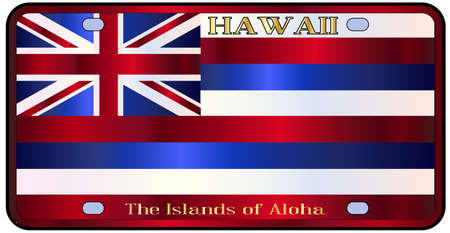 alaskan: Hawaii state license plate in the colors of the state flag with the flag icons over a white background