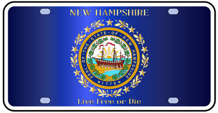 license plate: New Hampshire license plate in the colors of the state flag with the flag icons over a white background