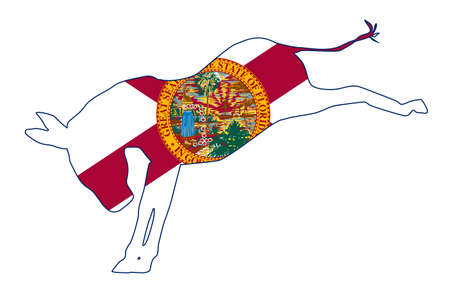 The Florida Democrat party donkey flag over a white background