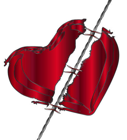 A torn heart divided with barbed wire Illustration