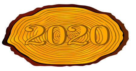 A section of a sawn log with the date 2020 over a white background Illustration