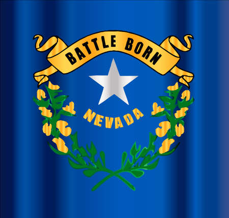 The flag of the American state of Nevada motif 向量圖像